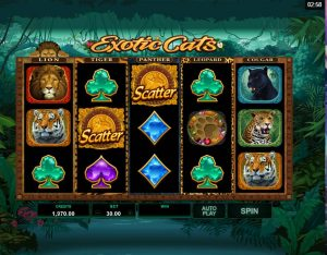 Exotic Cats Casino Slot
